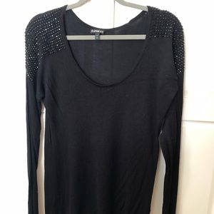 Express sparkle sweater